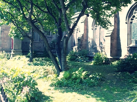- enclosed garden.JPG