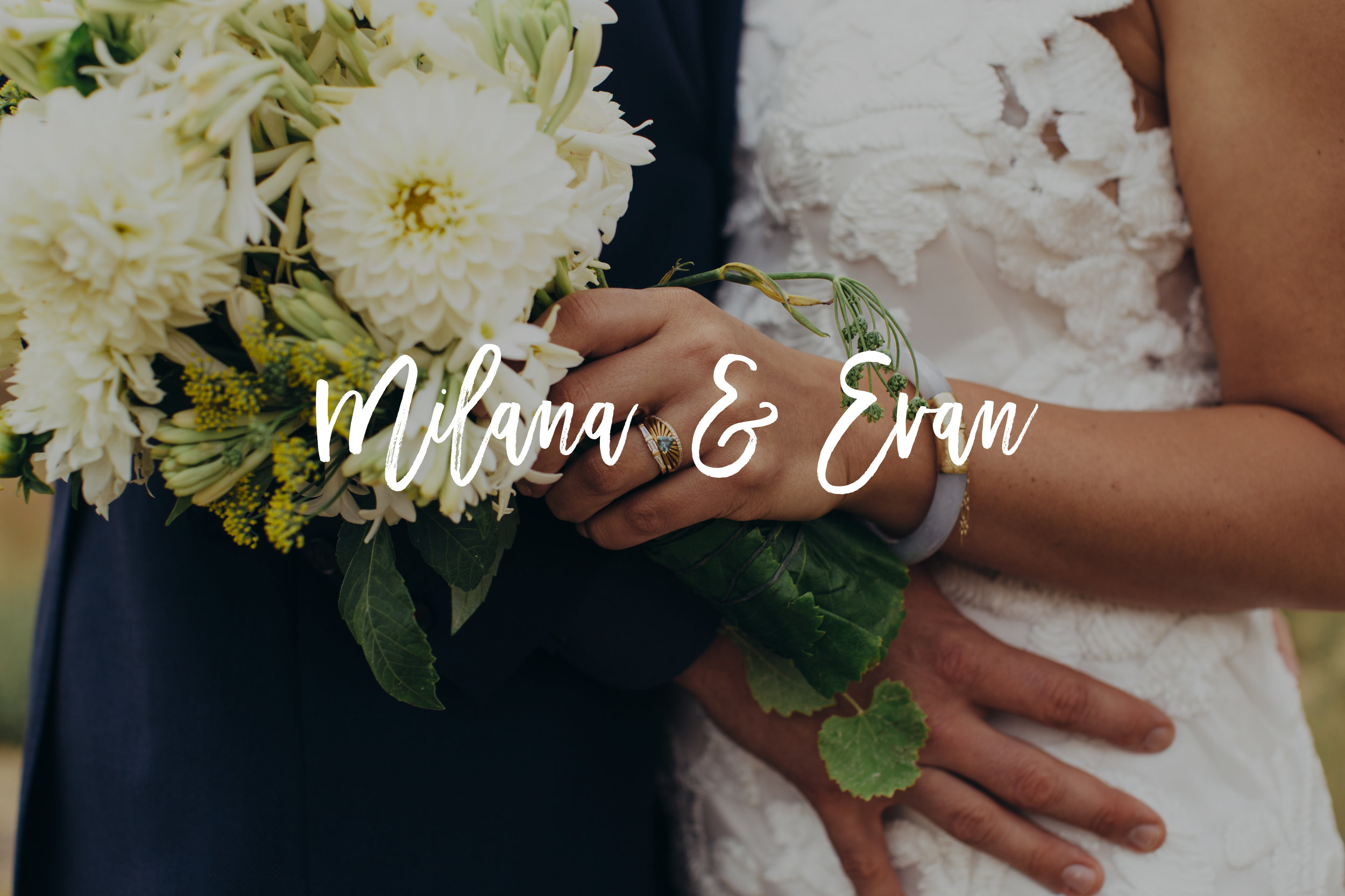 Milana and Evan Wedding Photos Button.jpg