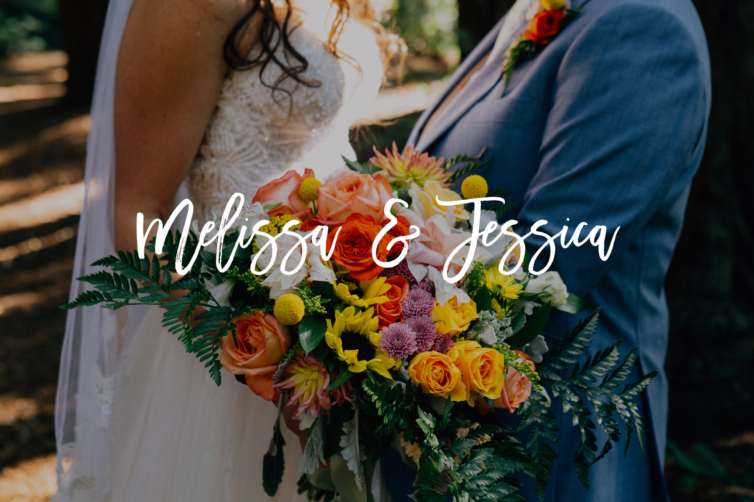Melissa and Jessica Wedding Photos Button.jpg