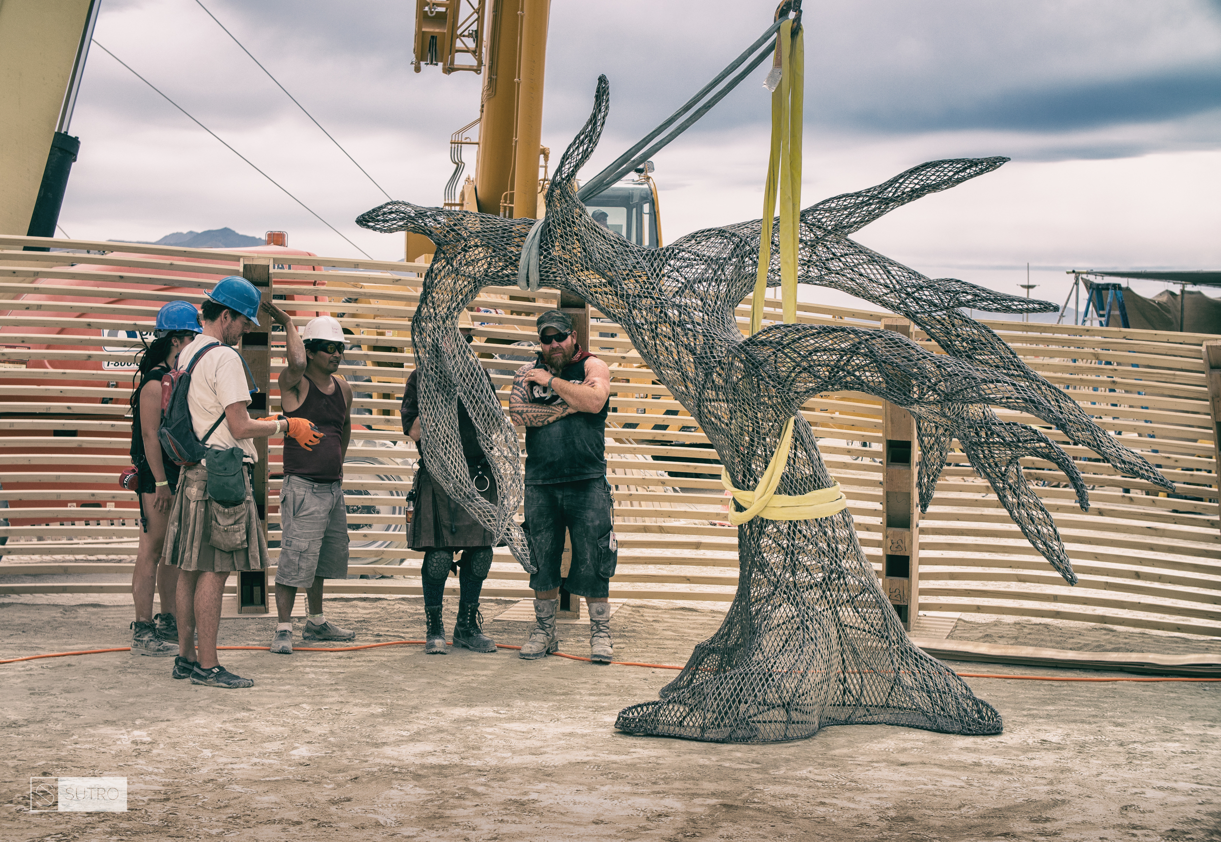 The first Tree lands on the grove inside the Temple of Promise, with an amazing crew of crane operators. Jazz Tigan (center left, white helmet), gives directions on proper placement.