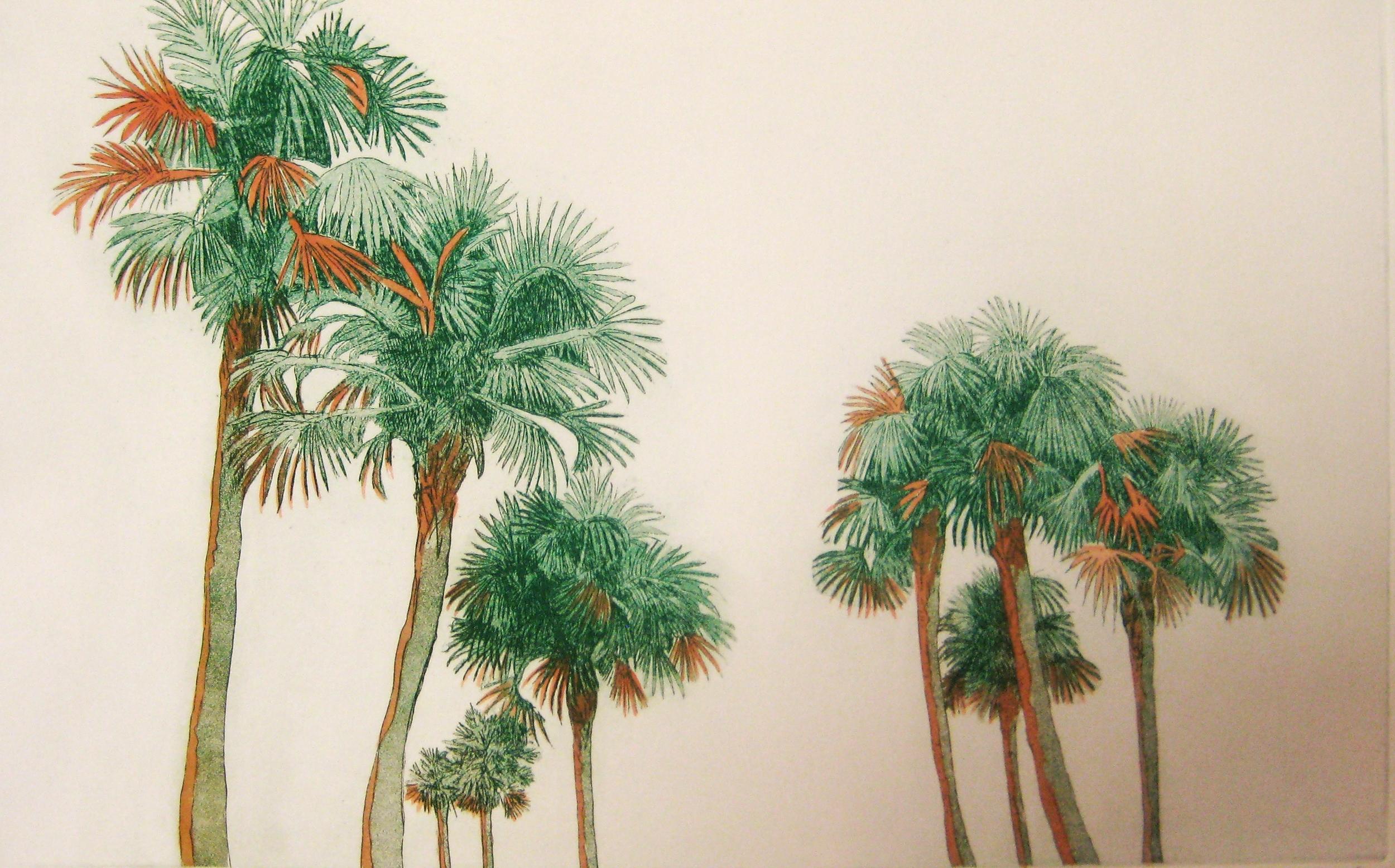 Sunkissed Palms