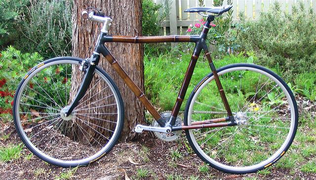 BambooOne.jpg