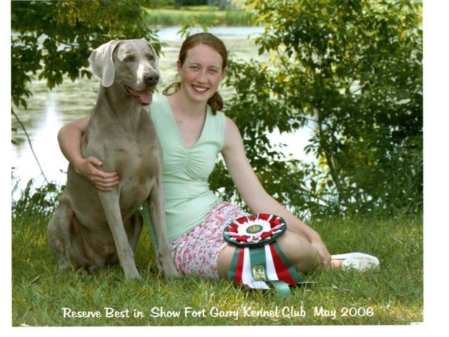 Jiro     Am/Ca Grand Champion Minalt All Wraped in Misletoe RN  Jiro had 3 best in Shows and a reserve best in show, he was a very special dog to a lot of people and is sadly missed     Champion Minalt All Wraped in Misletoe  RN
