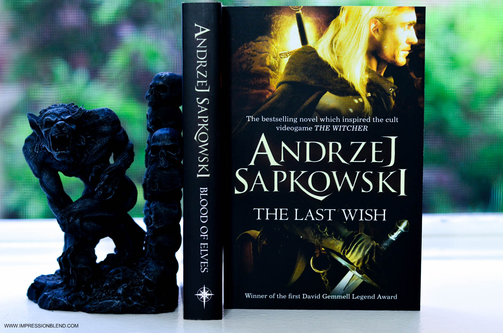 The Last Wish and Blood of Elves by Andzej Sapkowski