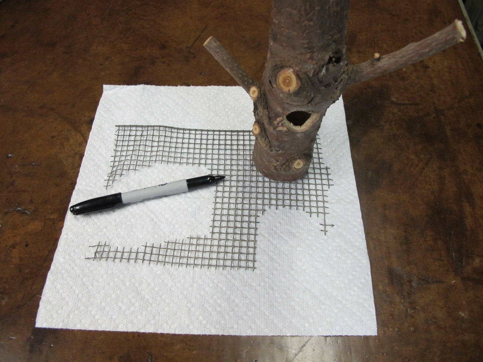 Sketch round pattern onto wire mesh with Sharpie pen using bottom of feeder .