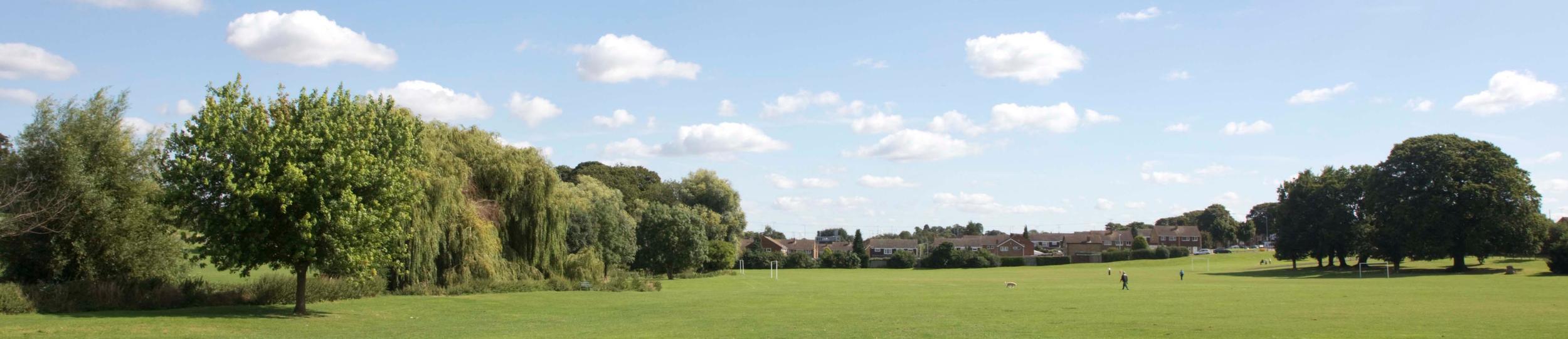 Lewsey Park-03.jpg