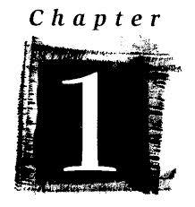 chapter1.jpeg