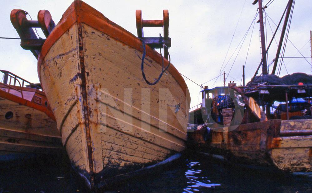 Boatyard 35030e1e418d4c.jpg