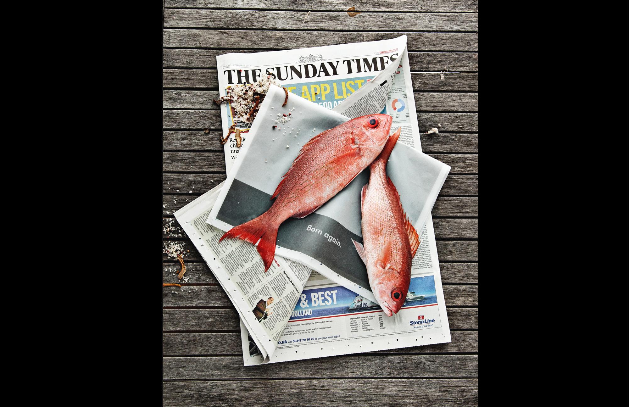 Fish News.jpg