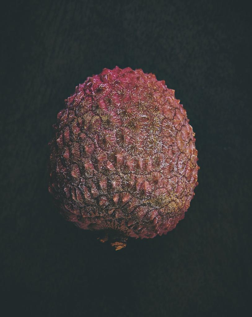 Alien fruit_1.jpg