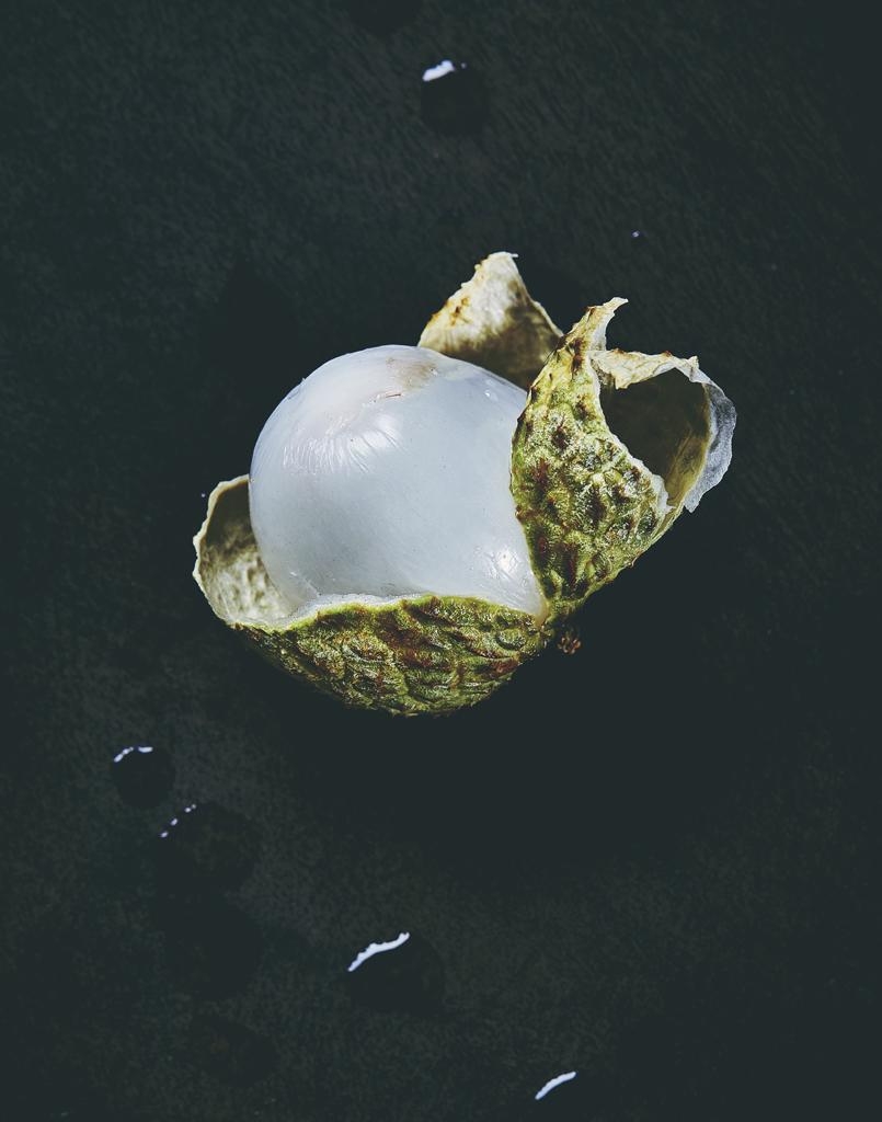 Alien fruit_3.jpg