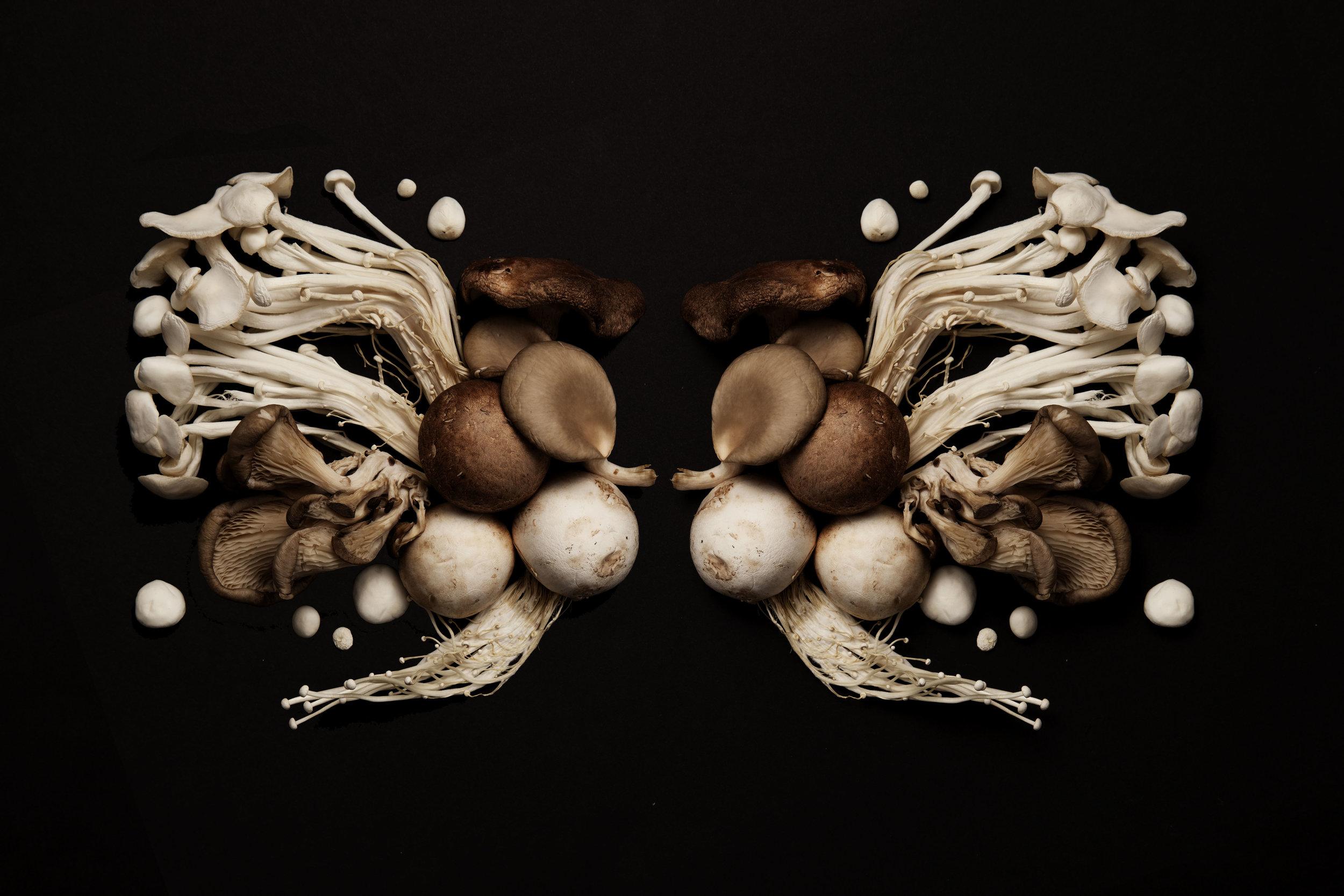 Mushroom ink blot 0008.jpg