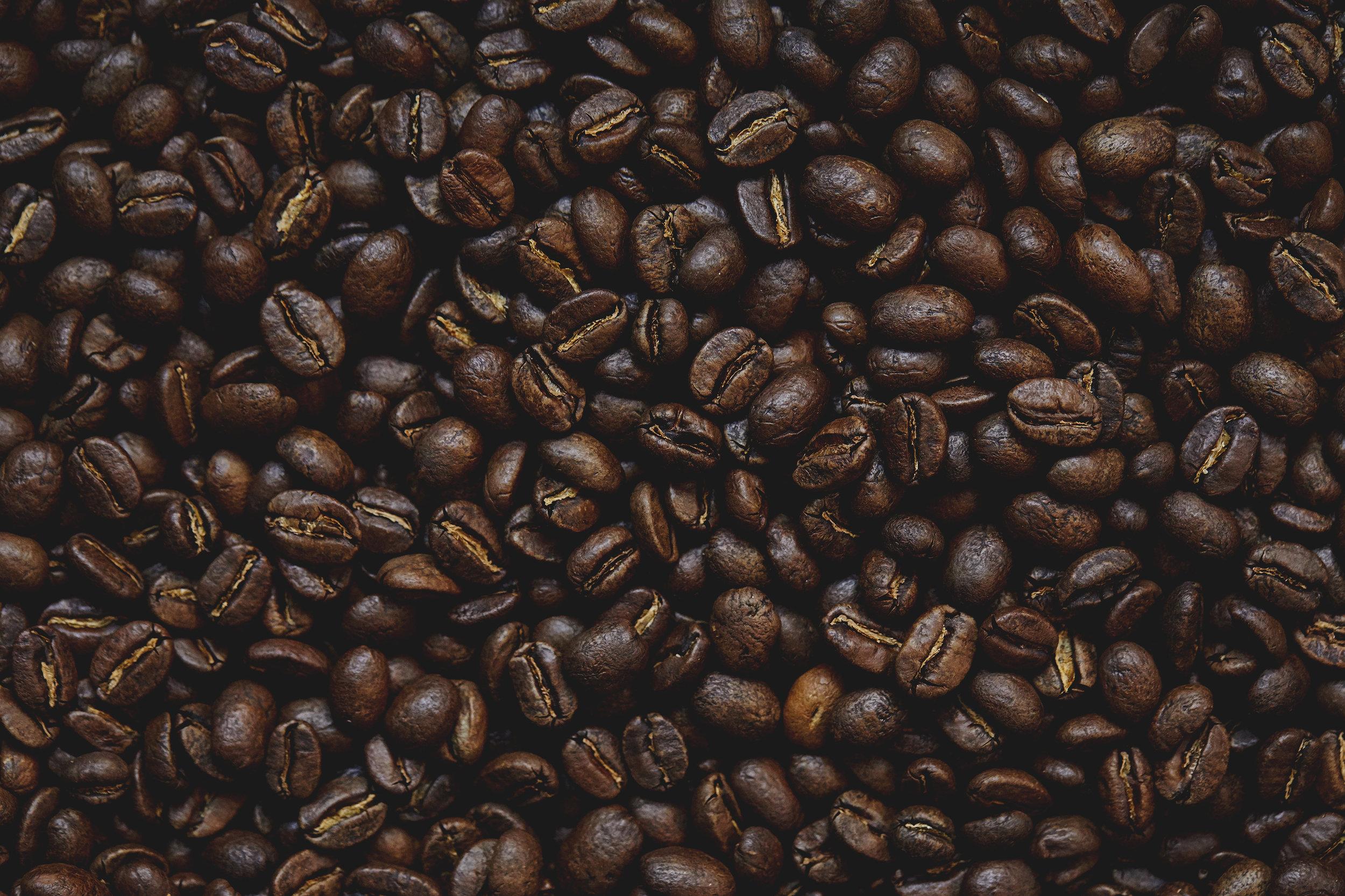 2018_09_17_Propeller Coffee18188.jpg