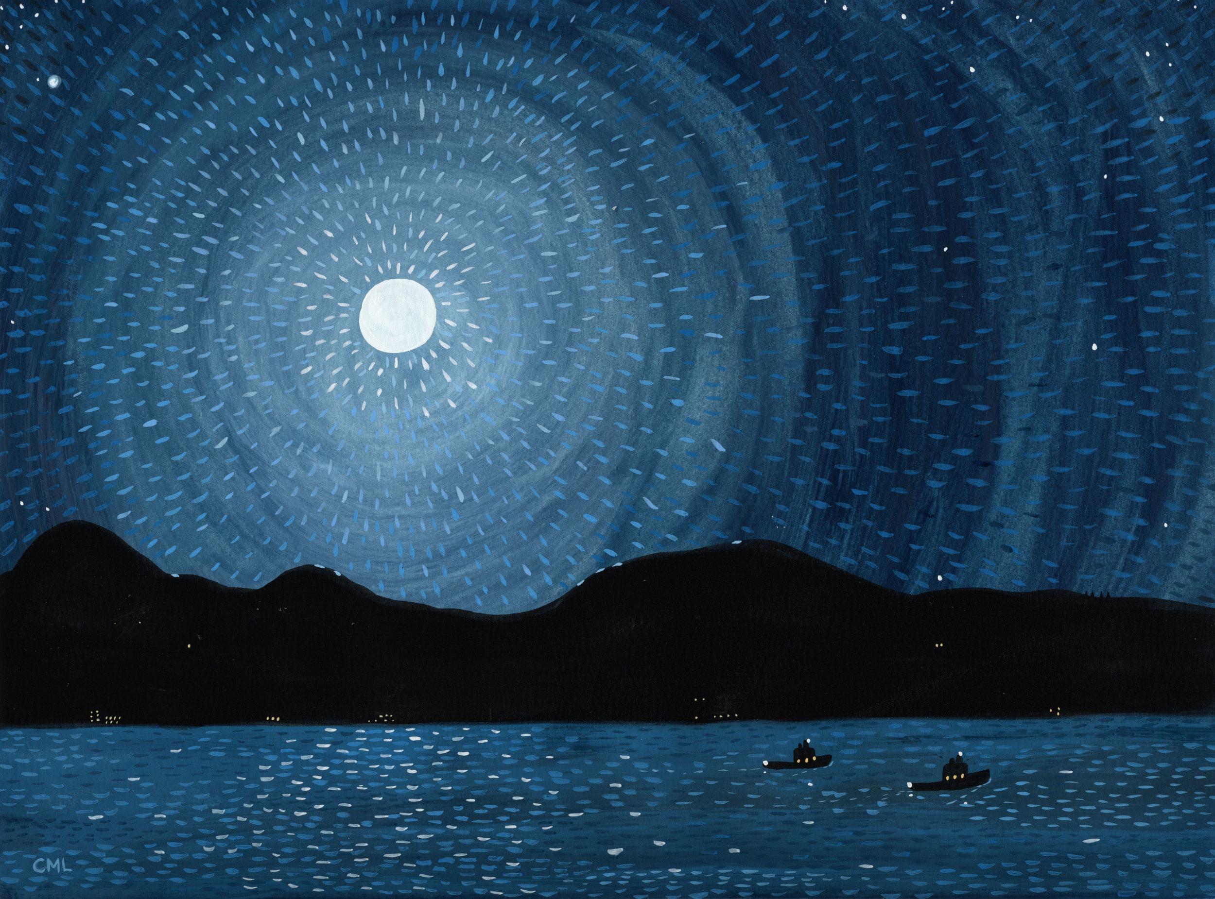 Cougar Bay at Night by Christine Marie Larsen