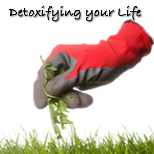Detoxifying Your Life with Dr Dae