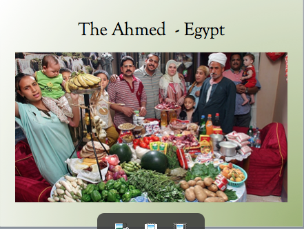 The ahmed family of cairo feeds 12 people on $69.00 per week ( US currency)
