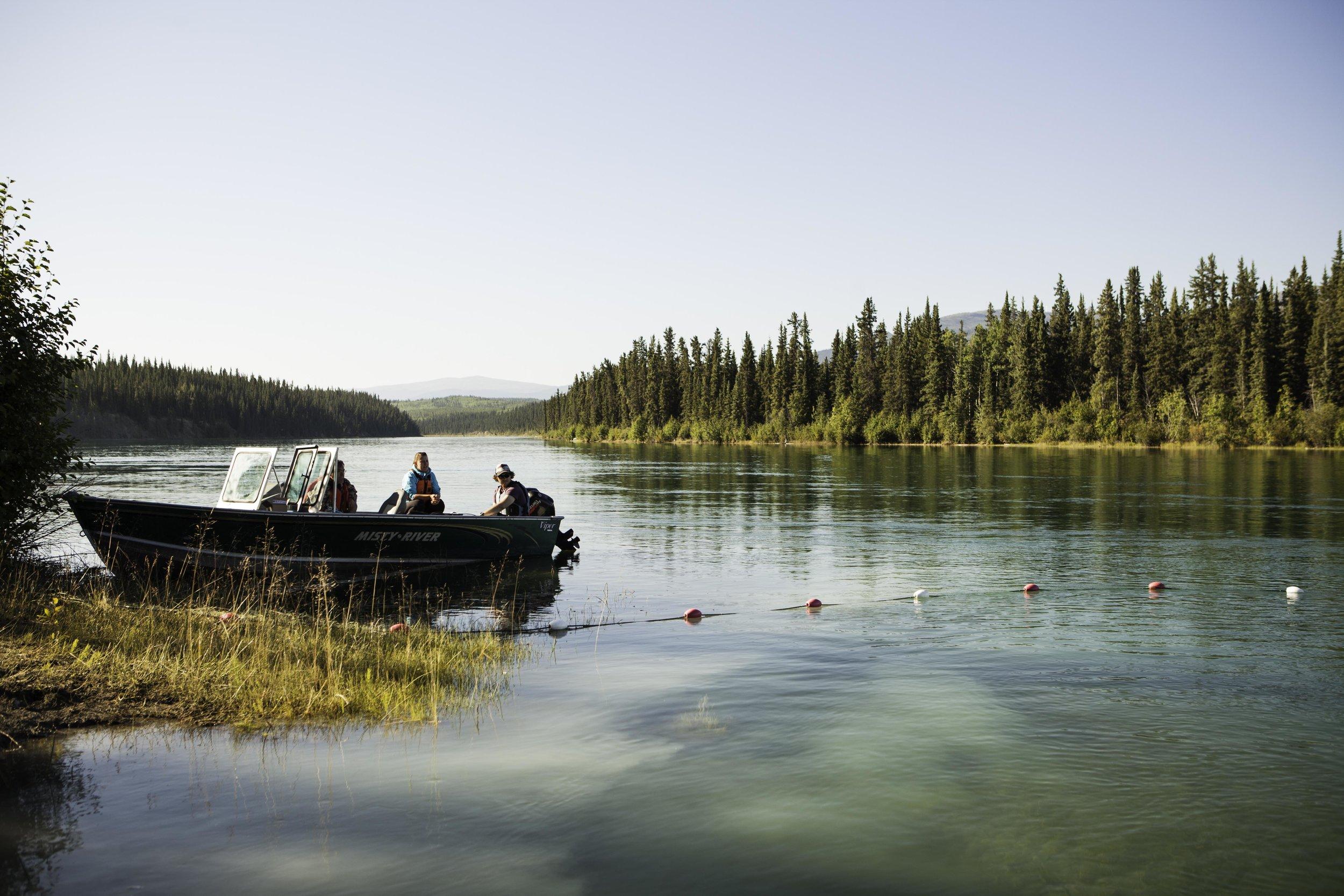 CWF_Yukon_Chinook-31.jpg