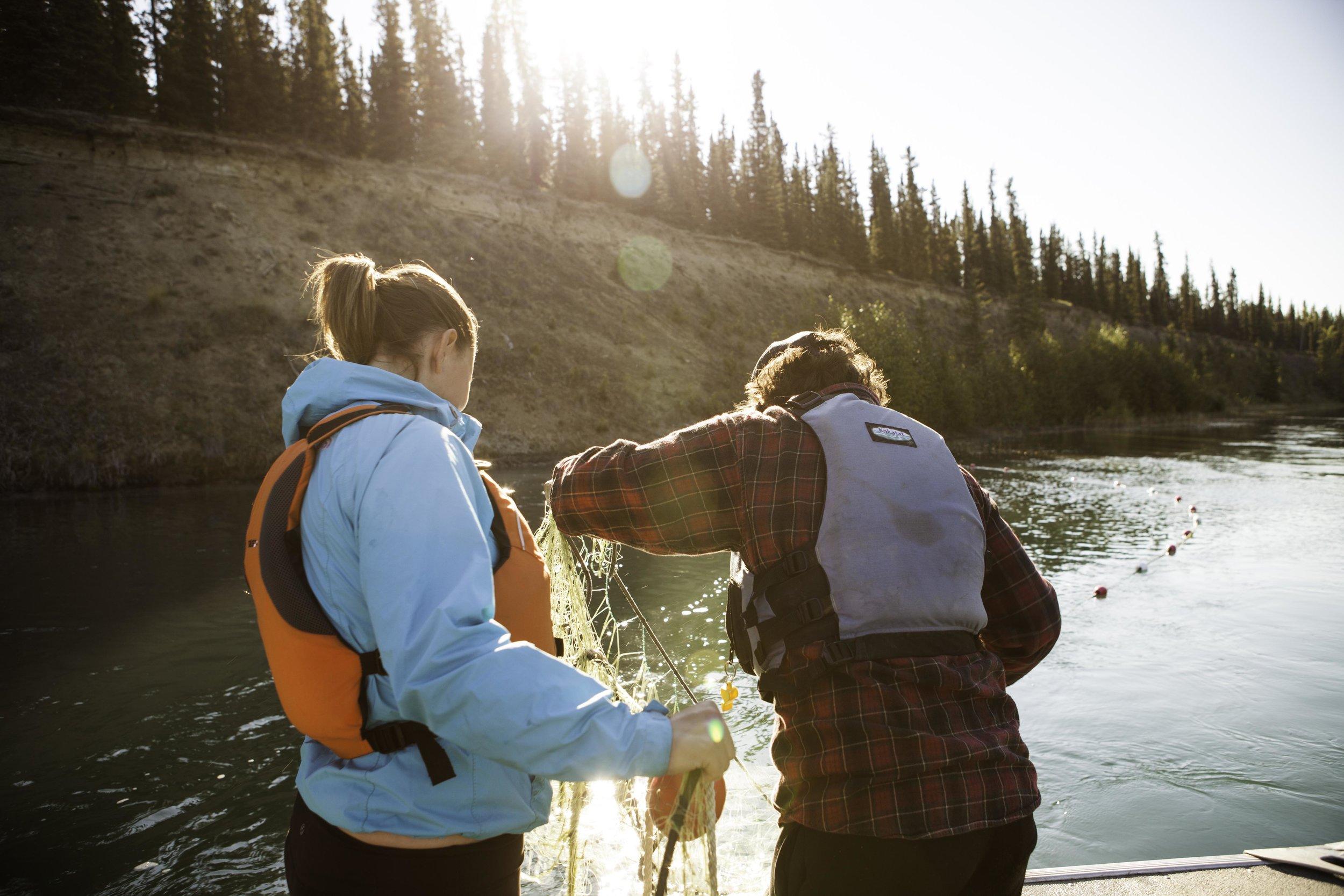 CWF_Yukon_Chinook-24.jpg