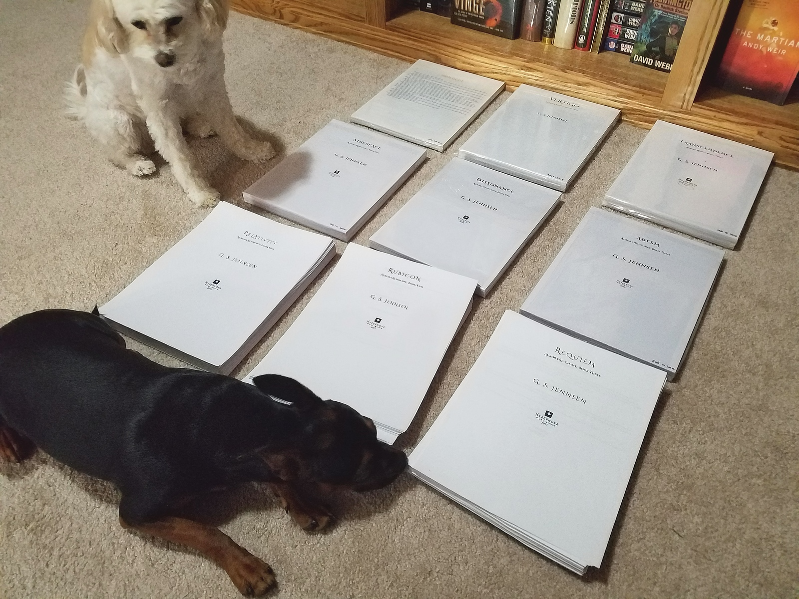 STARSHINE WAS PRINTED DOUBLE-SIDED BECAUSE I WAS DESPERATE TO SAVE MONEY. ALSO, THE PUPPERS REFUSED TO MOVE FOR THE PICTURE ;).