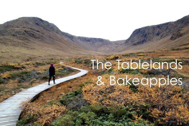 table-lands1.jpg