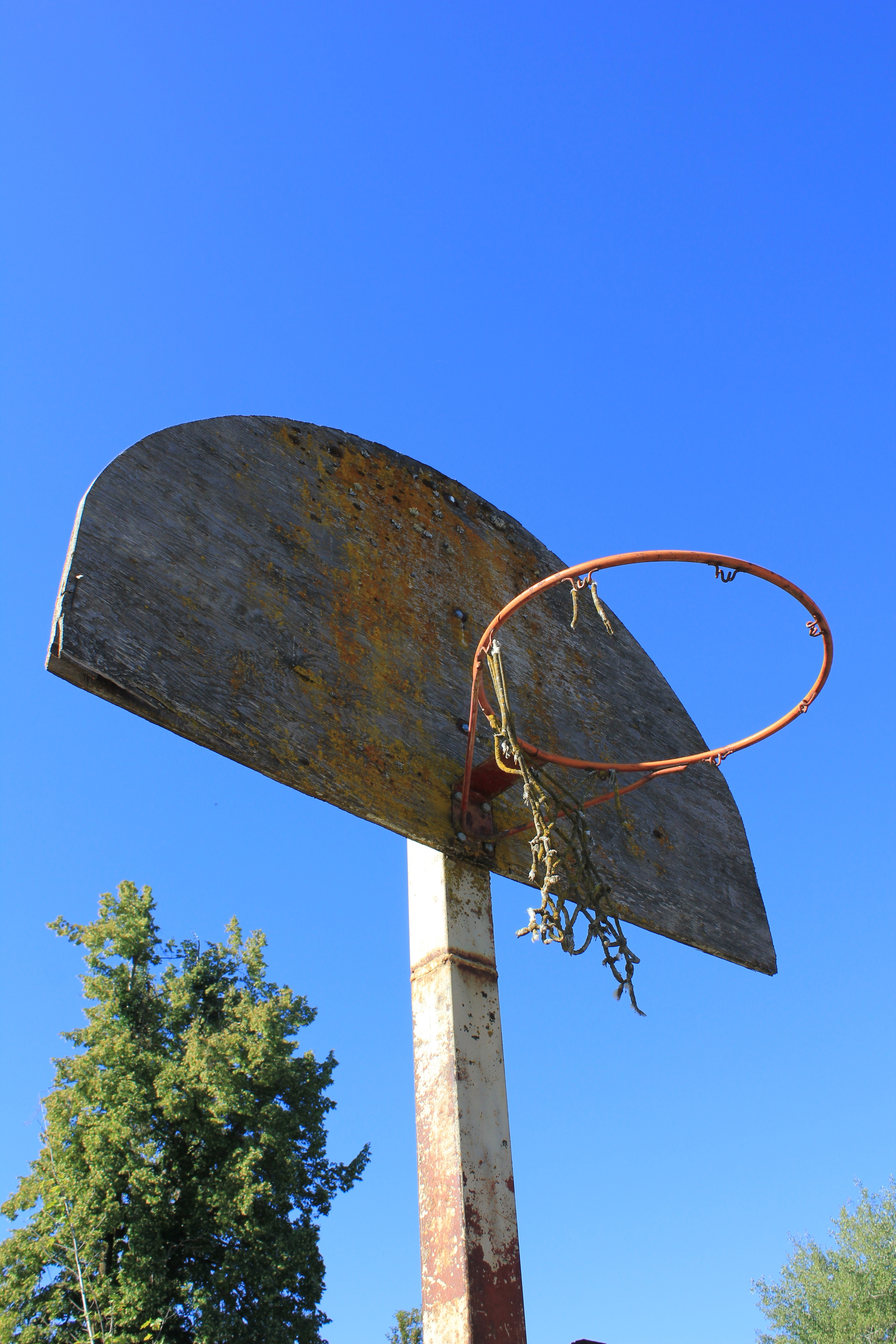 A subtle reminder that I will soon begin work as the second assistant coach of my daughter's first basketball team. Or just an awesome old hoop seen this past summer's end in southern Washington State.