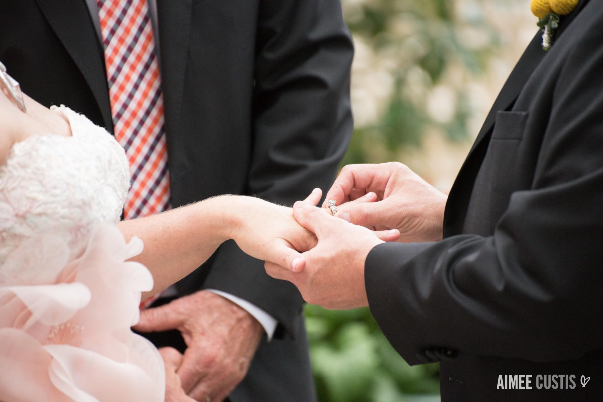 Sequoia wedding photography Washington DC