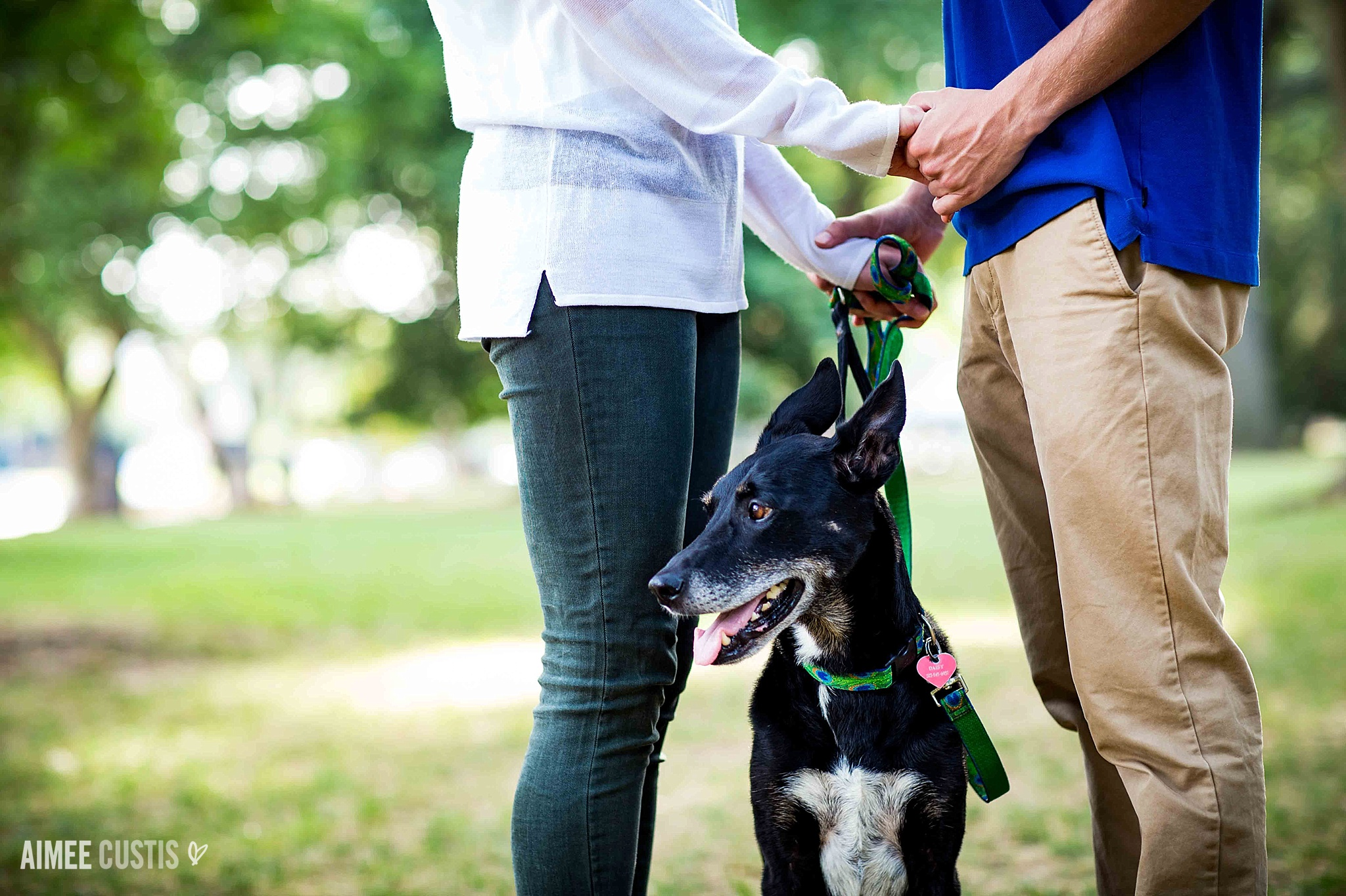 Lincoln Park Capitol Hill dog engagement session