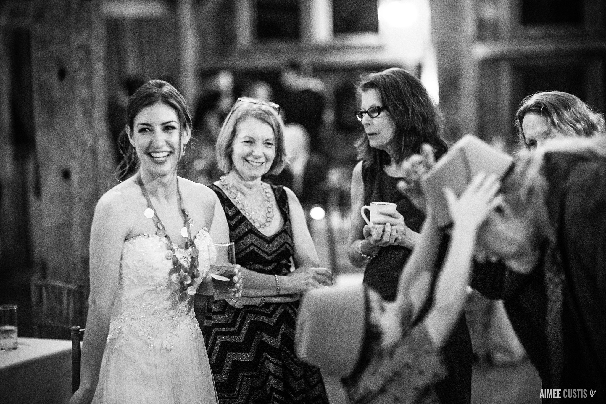 The Barns at Wolf Trap Childrens Theater wedding photography Aimee Custis Photography