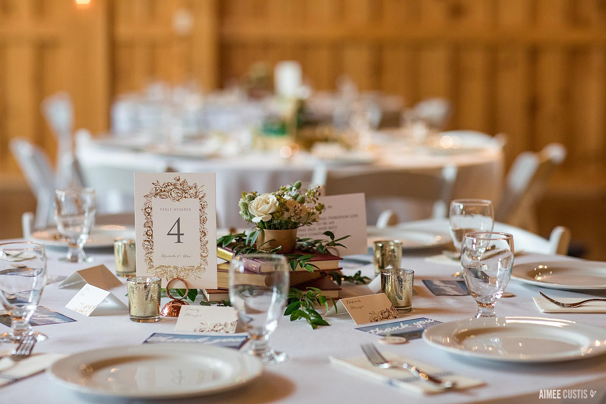 Faithbrooke Barn and Vineyards Luray Virginia wedding photographers