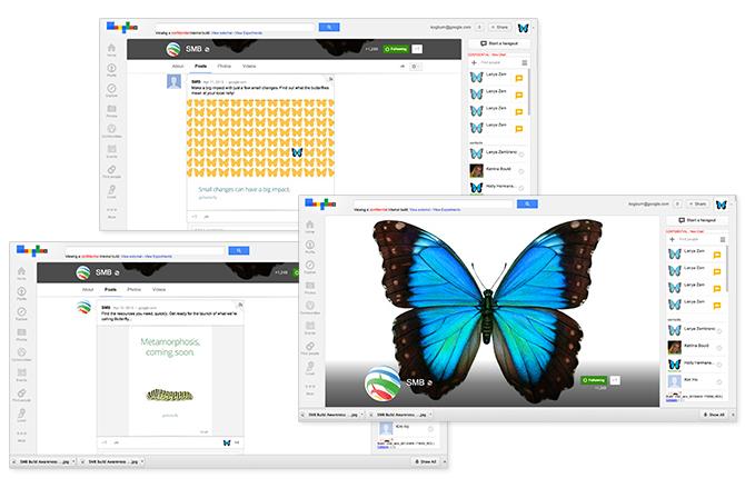 ckswanson_portfolio_Google_butterfly_google-_horz_01_o.jpg