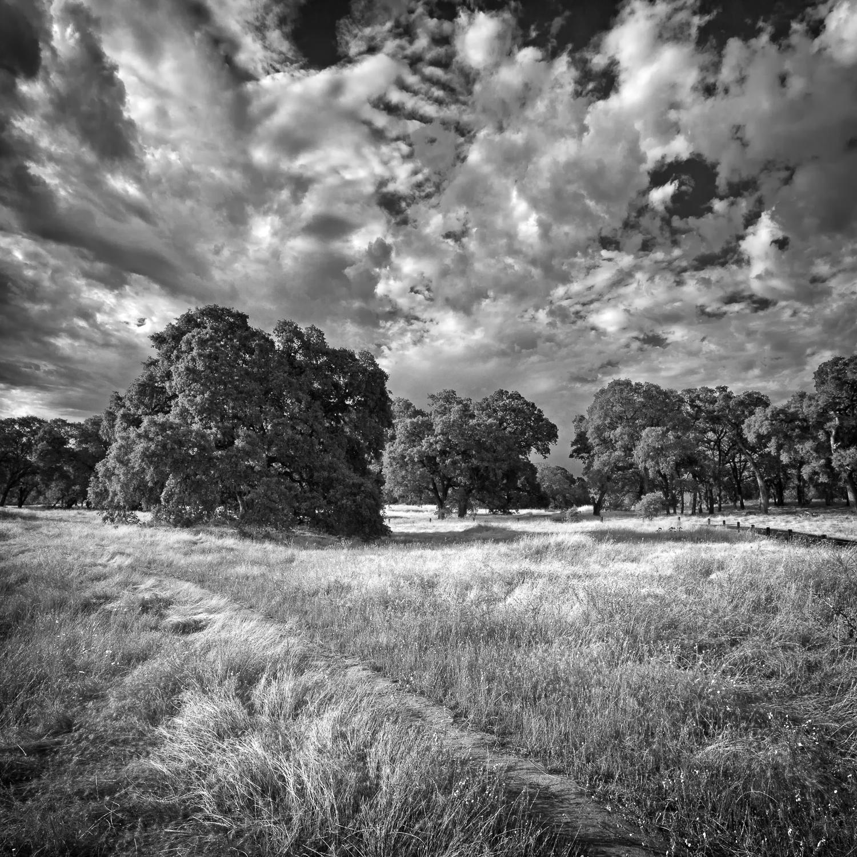 Summer_Storm_Pleasant_Grove_2.jpg