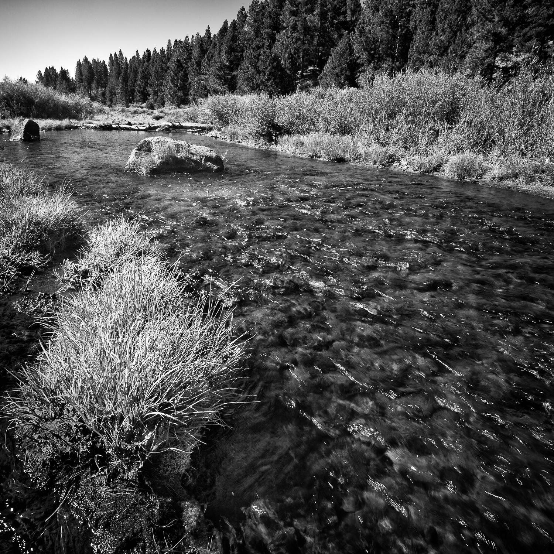 Riffle, Little Truckee River, Sierra County, California
