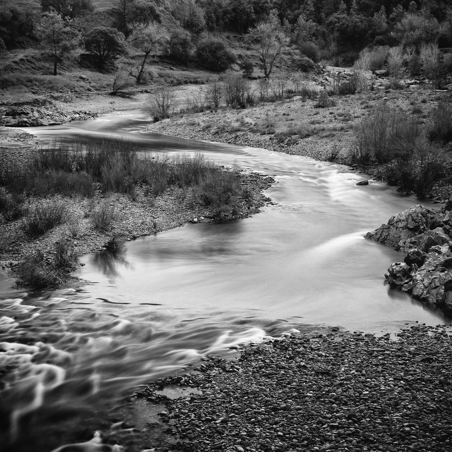 American River Confluence, Study 1, Placer County, California