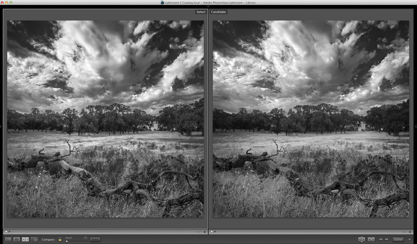Lightroom on left, Silver Efex on right (click to view full size).