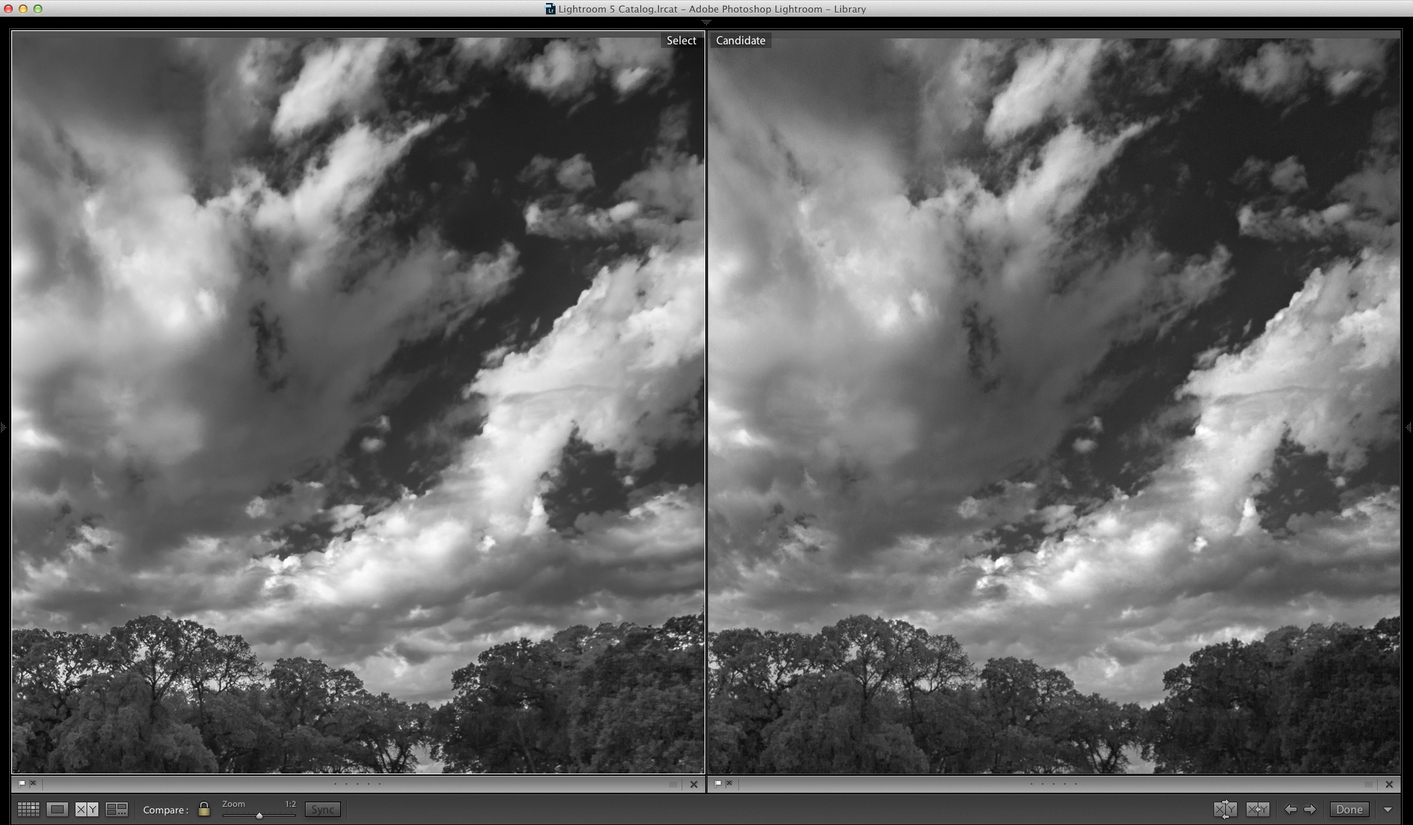 Lightroom (on left) showing smoother transitions from gray to white (click to view full size)