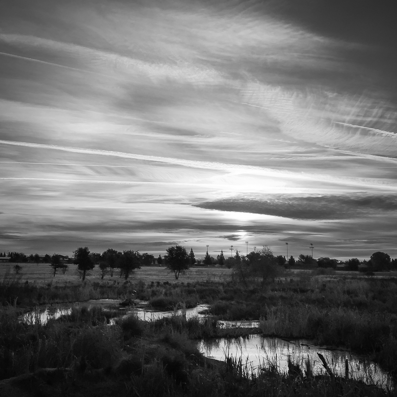 Sunrise Over Wetland