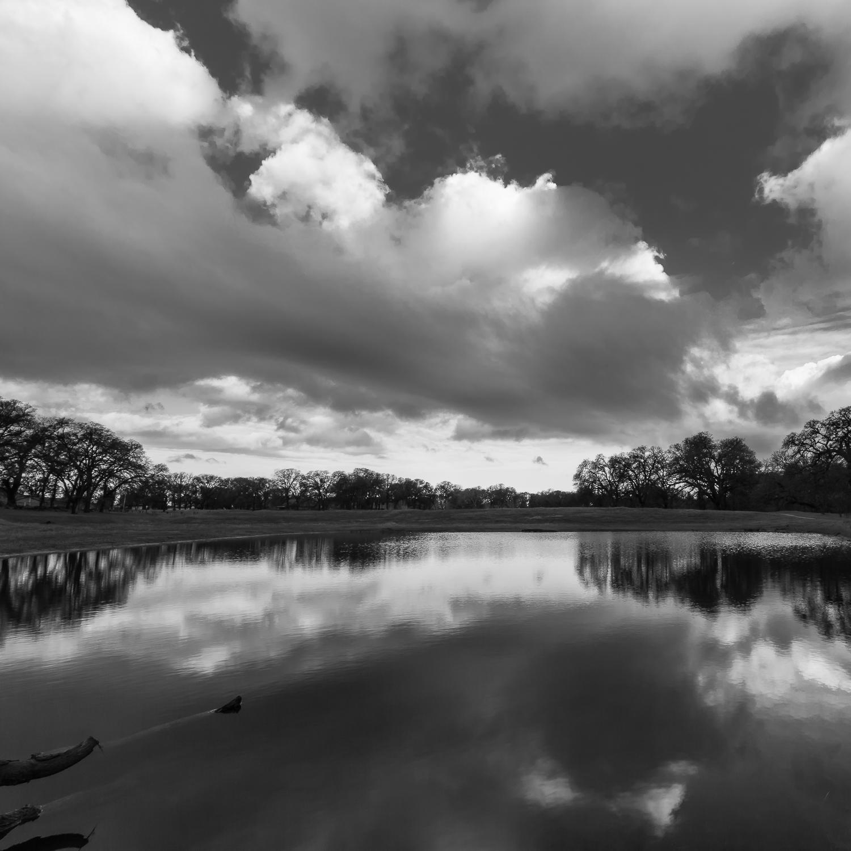 Storm Clouds Over Seasonal Wetland