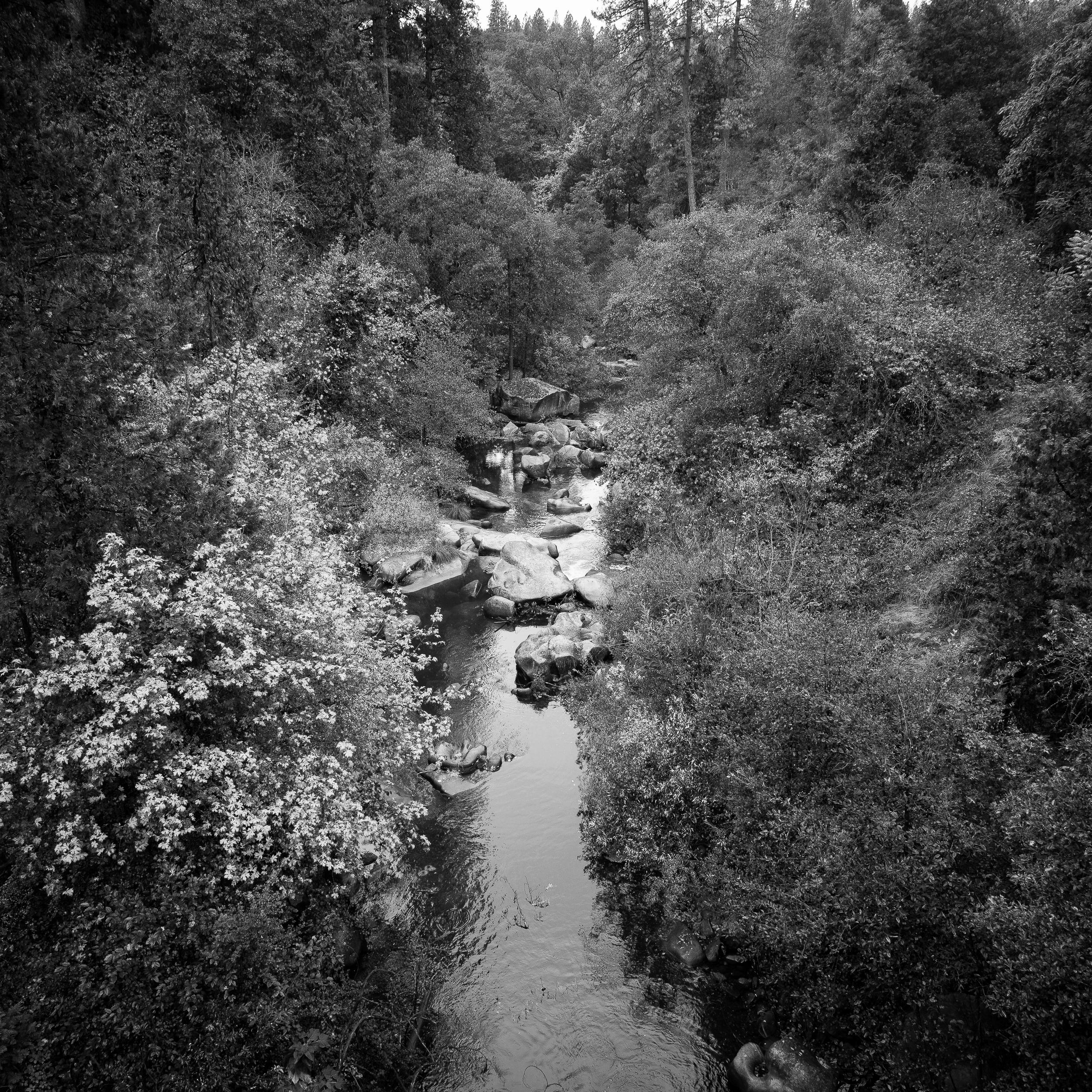 Deer Creek at South Pine