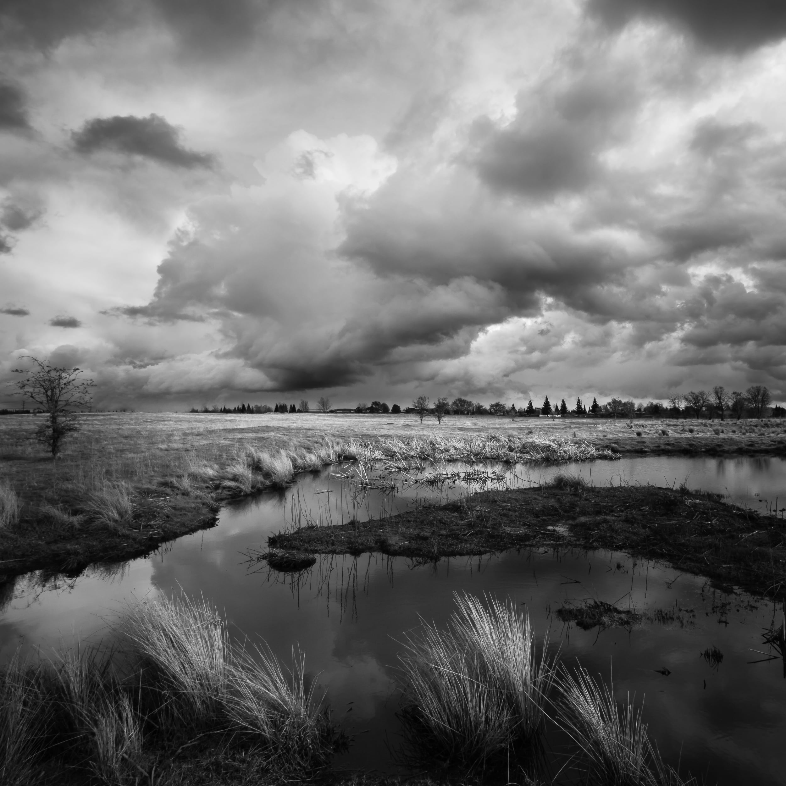 Storm Clouds Over Mahany Wetlands, Study 2