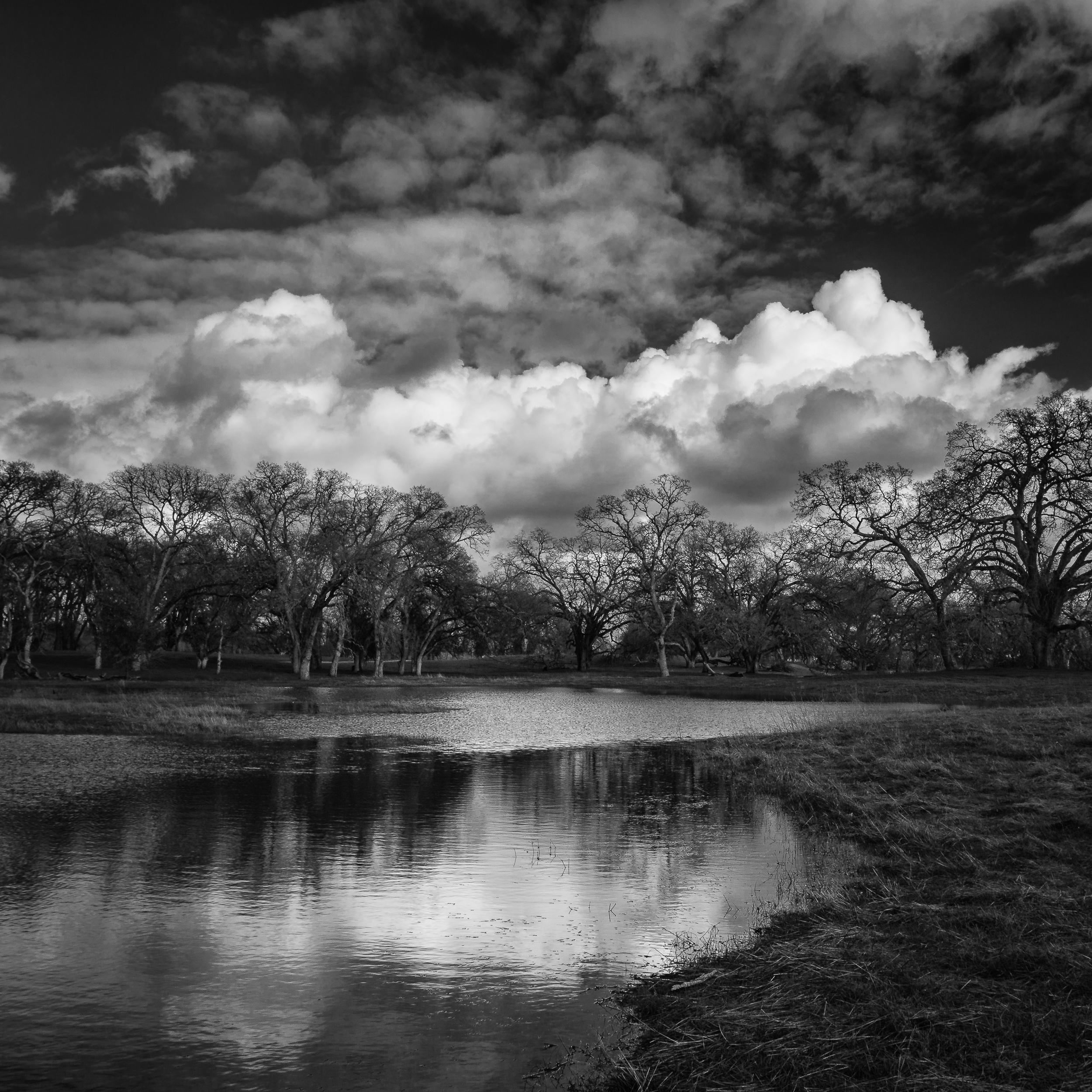 Mahany Pond