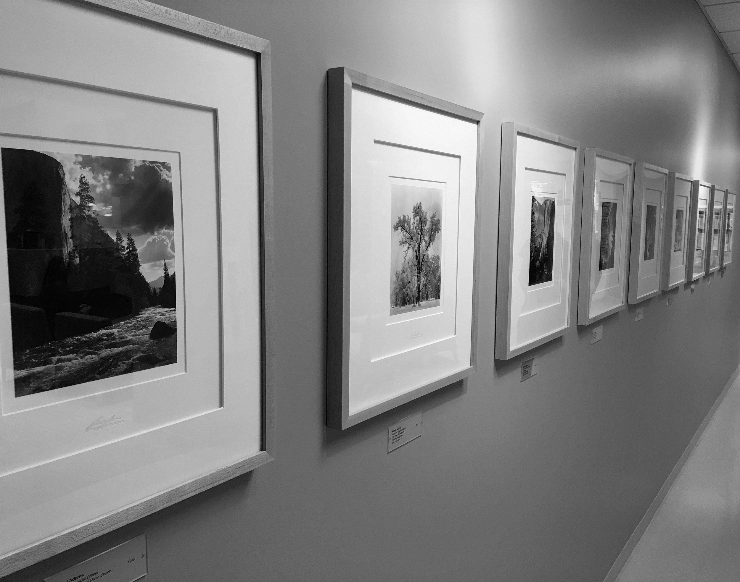 A collection of small Ansel Adams prints