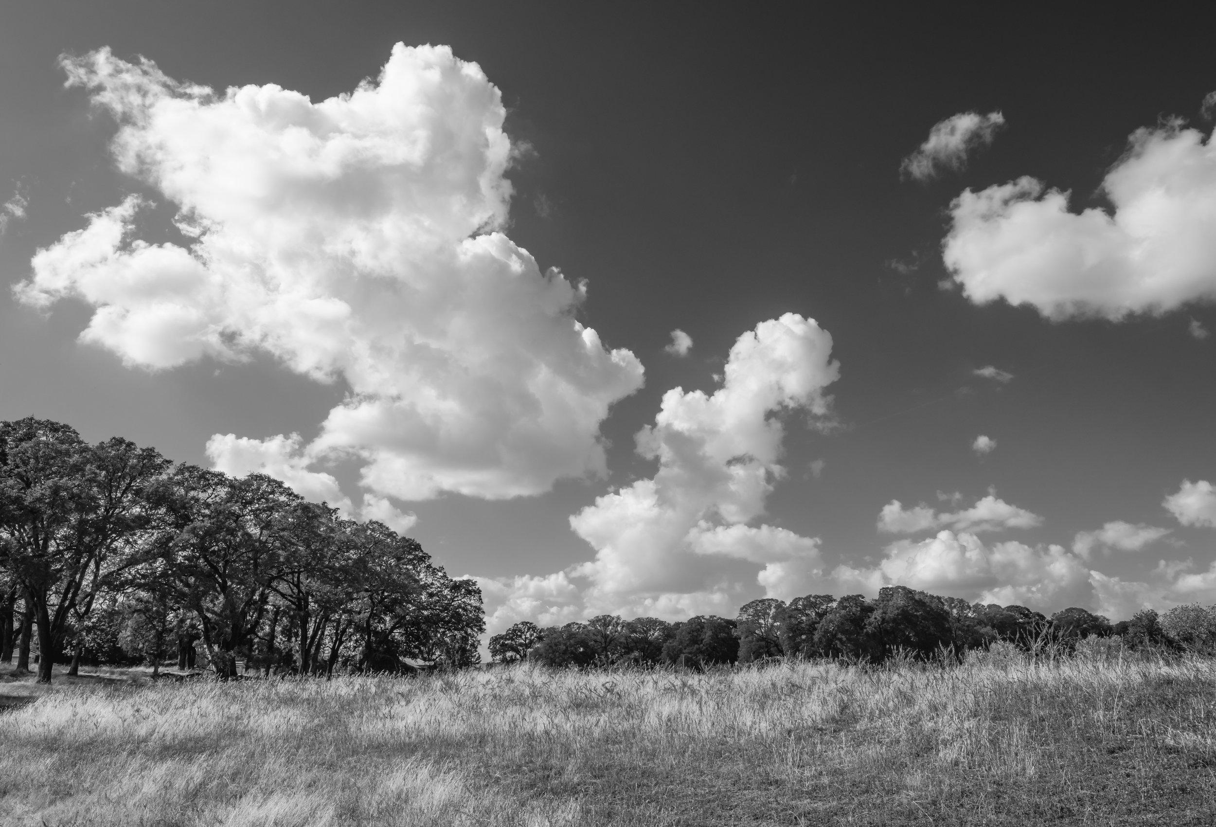 First Storm Cloud Study 1