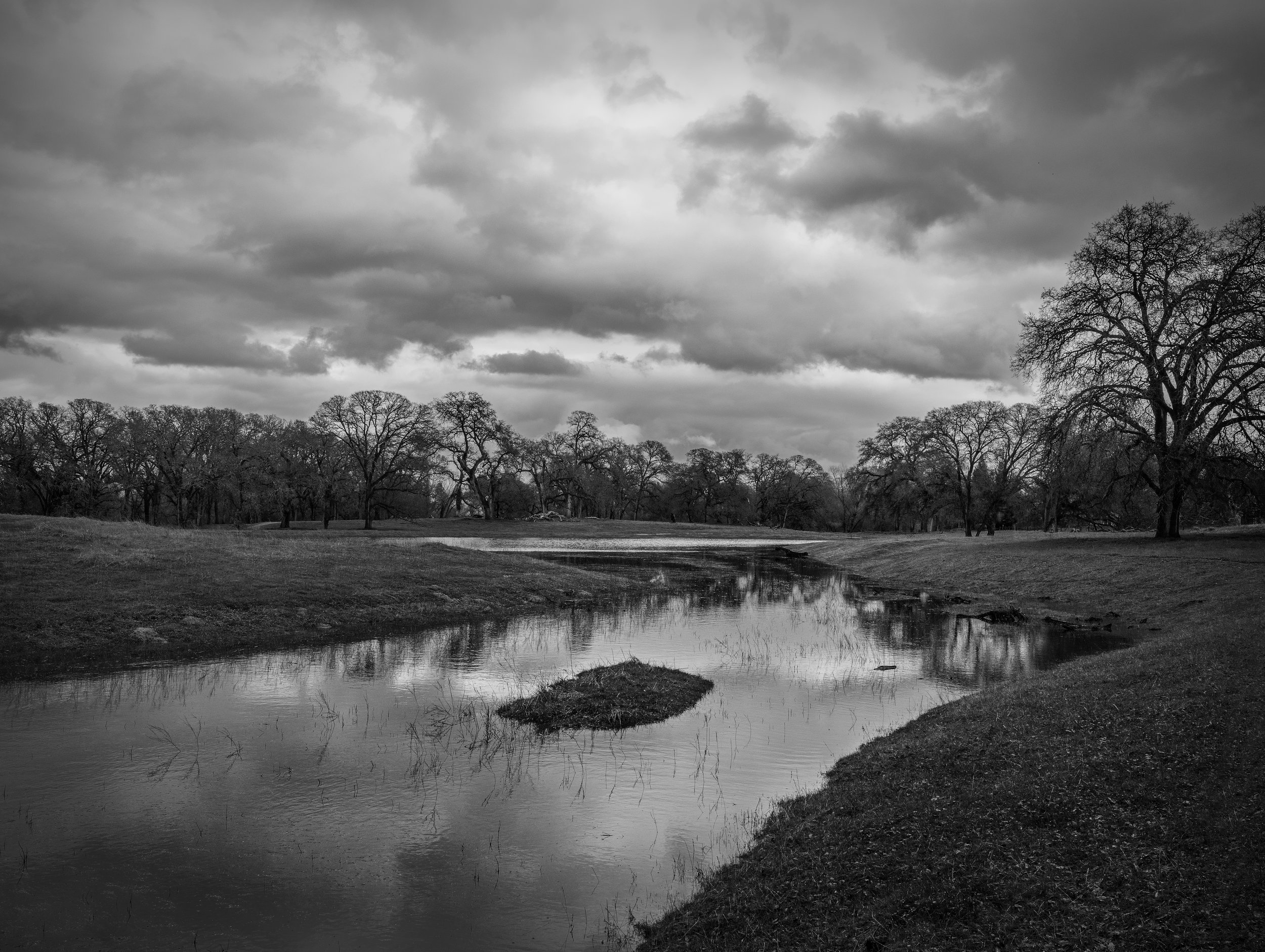 The Wetland at Branch Creek