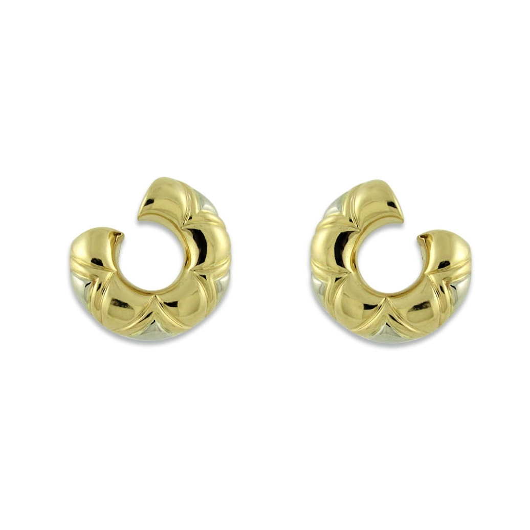 Burgari Gold and White Gold Earrings