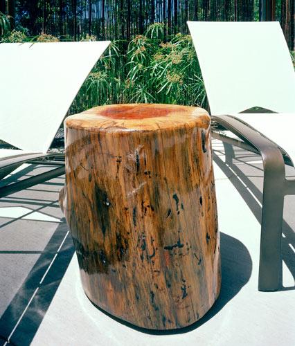 rio stump copy.jpg