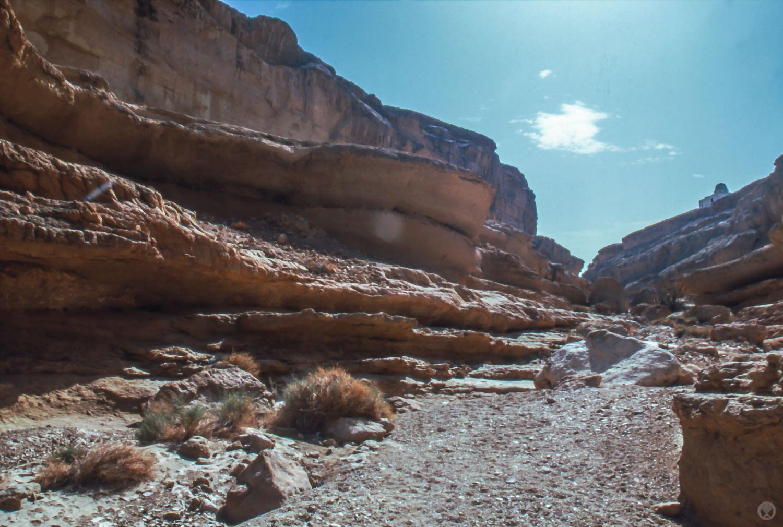 Sidi Bouhlel / Shubiel Gorge, near Tozeur, Tunisia