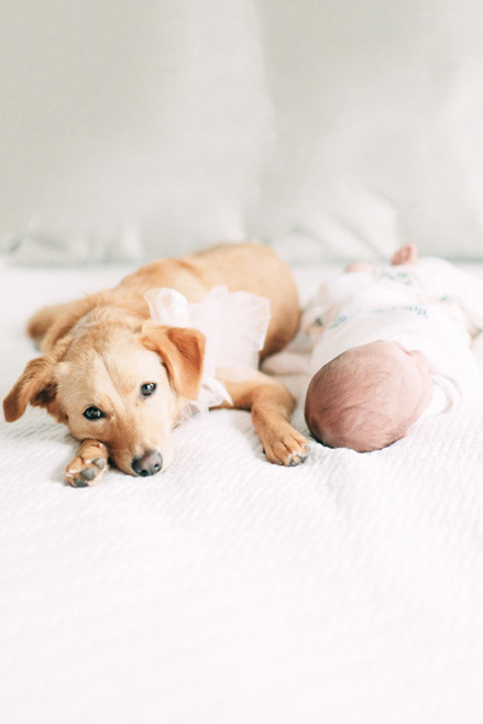 Orange-County-Newborn-Photographer-Orange-County-Maternity-Photographer-Cori-Kleckner-Photography92.JPG