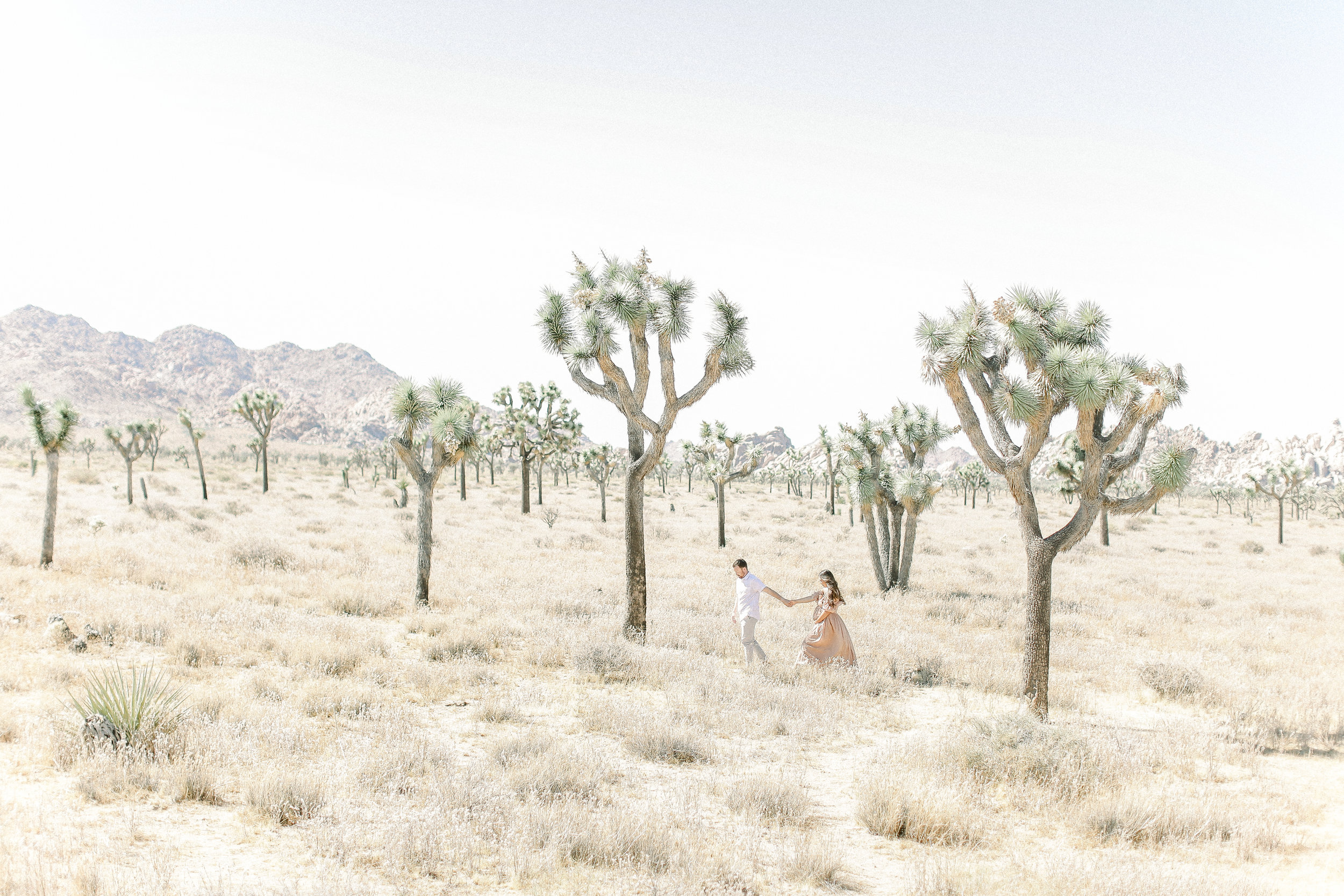 Joshua-Tree_Maternity_session_photos_Cori_kleckner_photography_.JPG