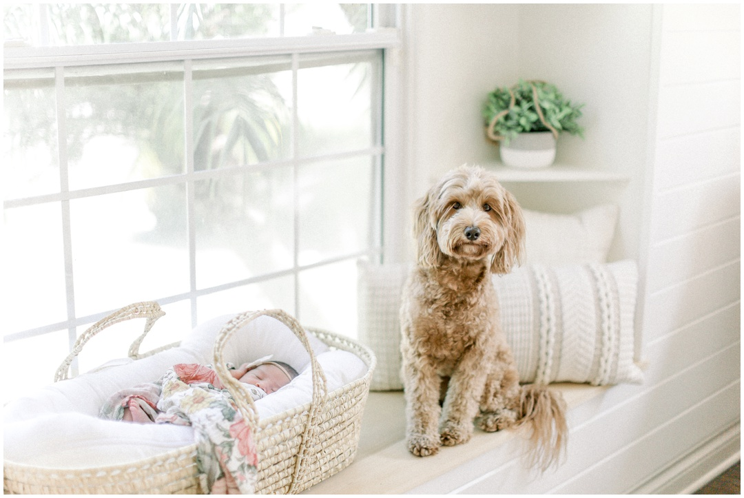 Newport_Beach_Newborn_Light_Airy_Natural_Photographer_Newport_Beach_Photographer_Orange_County_Family_Photographer_Cori_Kleckner_Photography_Newport_Beach_Newborn_Photographer_Taylor_Colacion_Family__4248.jpg