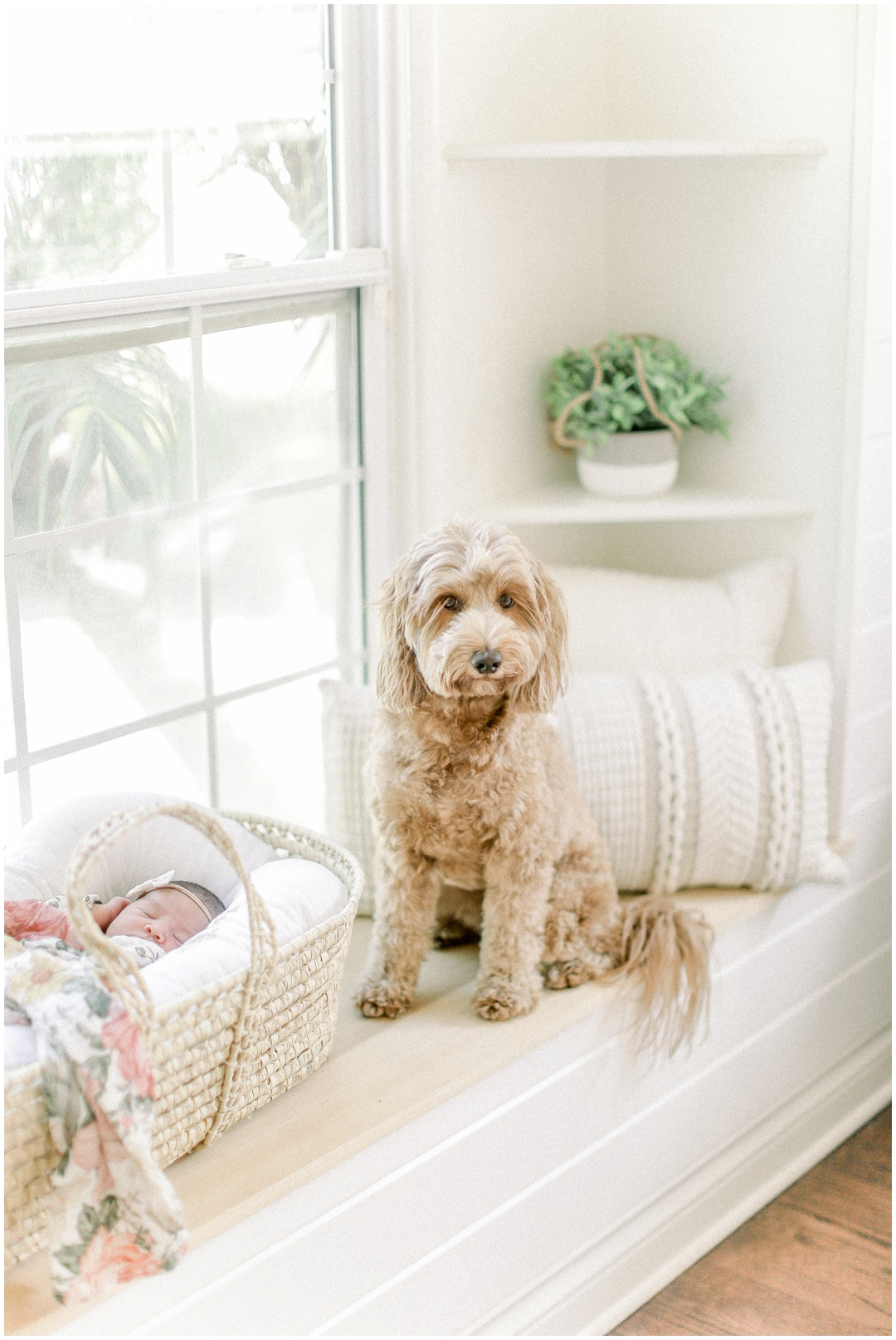Newport_Beach_Newborn_Light_Airy_Natural_Photographer_Newport_Beach_Photographer_Orange_County_Family_Photographer_Cori_Kleckner_Photography_Newport_Beach_Newborn_Photographer_Taylor_Colacion_Family__4254.jpg